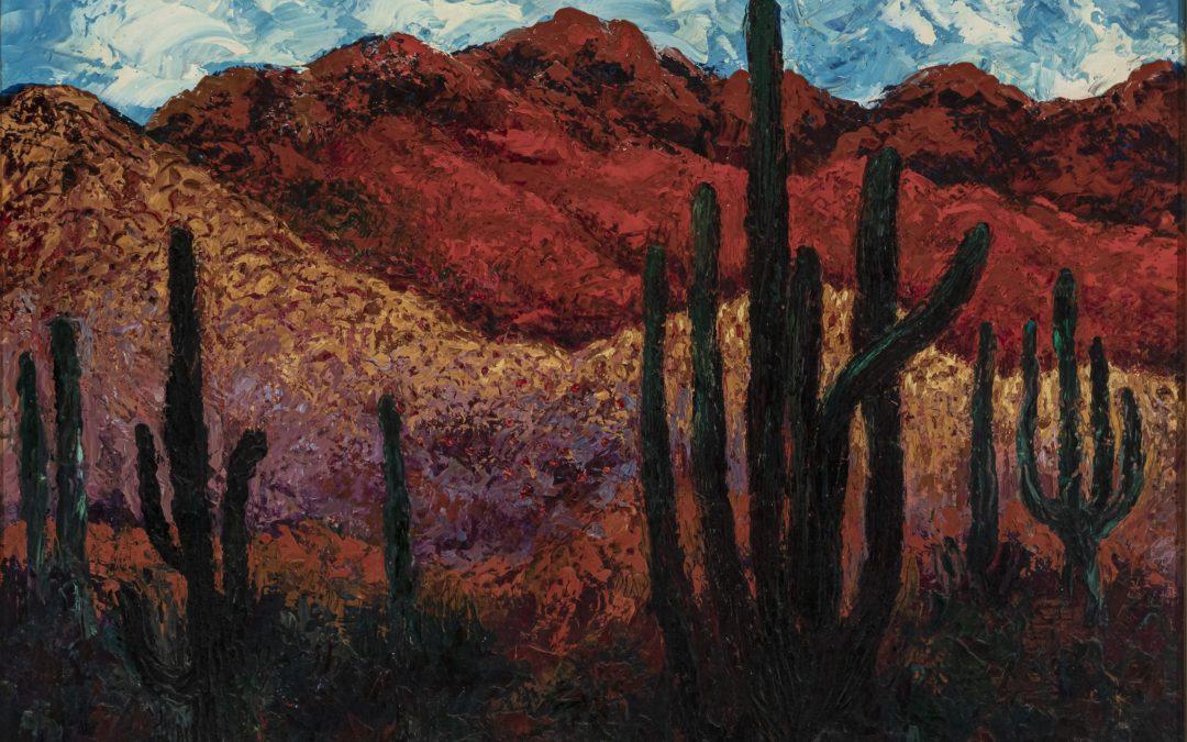 Desert de l'Altar Sonora. Frontera de Méxic i Estats Units