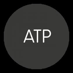 Antoni Tàpies Puig
