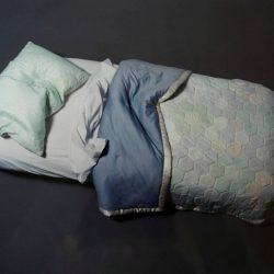 Dream wrap (embolcalla somnis)
