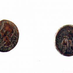 Moneda (semis)
